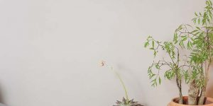 kreidezeit-naturfarben-wallpaints-clay-paint-textured-1