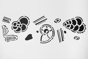 kreidezeit-naturfarben-schablonen-mikrofossilien 1