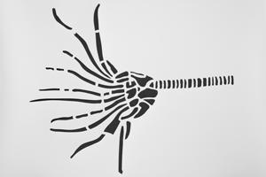 kreidezeit-naturfarben-schablonen-seelilie