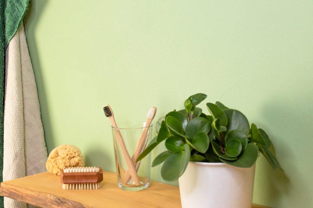 kreidezeit-naturfarben-clay-finish-plaster