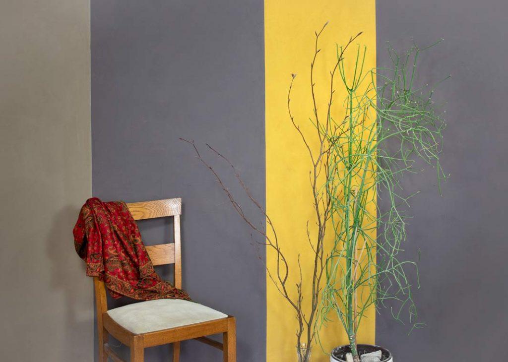 kreidezeit-naturfarben-wandfarben-vollton-bidemittel-2